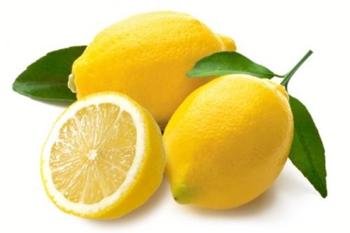 檸檬 レモン   古聖の方丈記 畢...