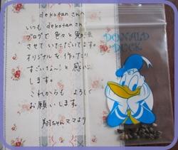 IMG_4746.JPG