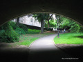 040_Central Park