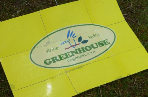 3 greenhouse.jpg