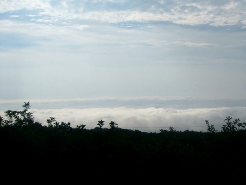那須雲海01.jpg