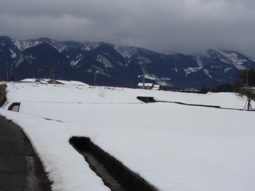 DSC08145雪景色.JPG