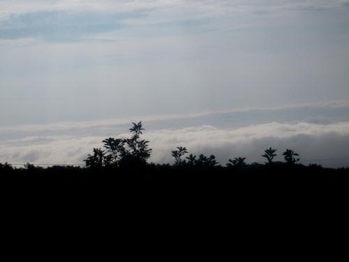 那須雲海03.jpg