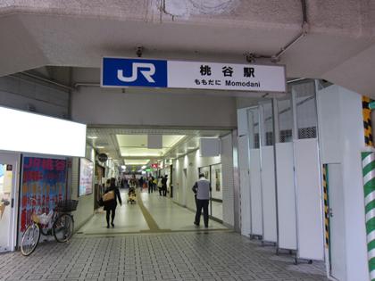IMG_5736-1.JPG