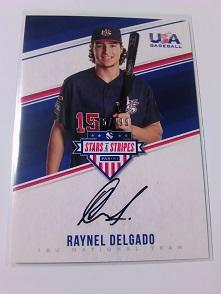 Raynel Delgado オート (499枚限定).JPG