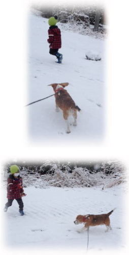 140216雪遊び.jpg