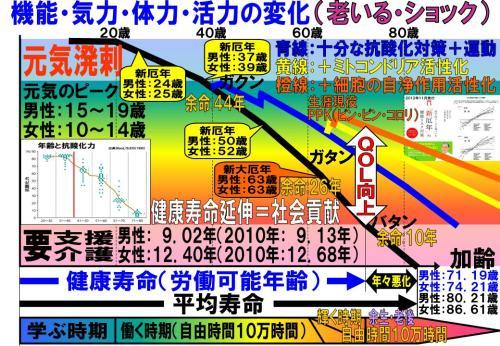 機能・気力・体力・活力の変化1410.jpg