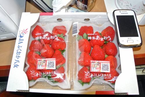 DSC_1565strawberry.jpg