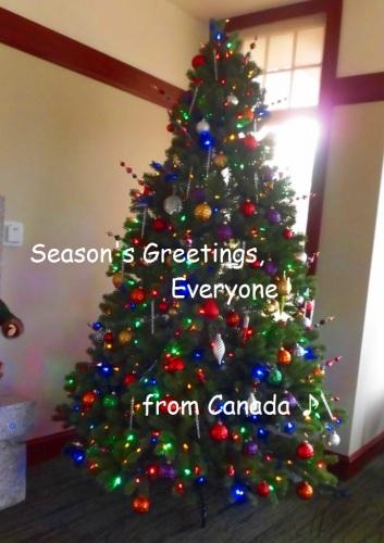 season's greetings  2015.jpg