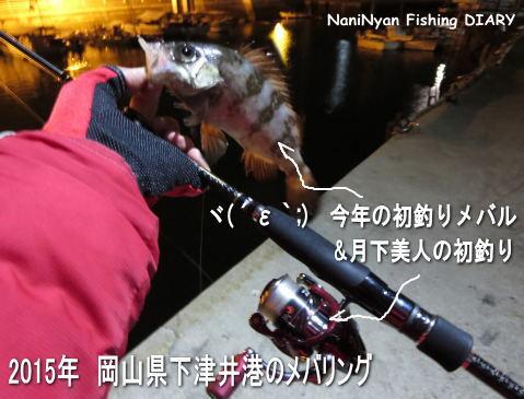 2015年1月-下津井のメバリング.jpg