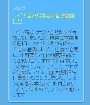 05プロフィール2012.2.28.jpg
