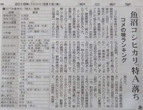 IMG_4947.JPG