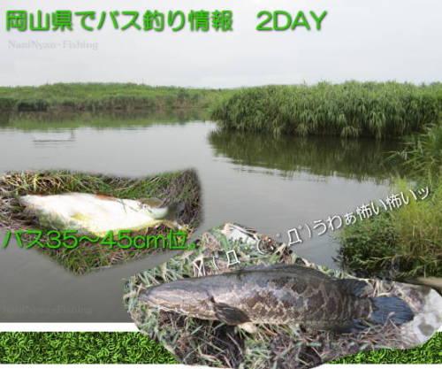 h27.08岡山市の河川.jpg