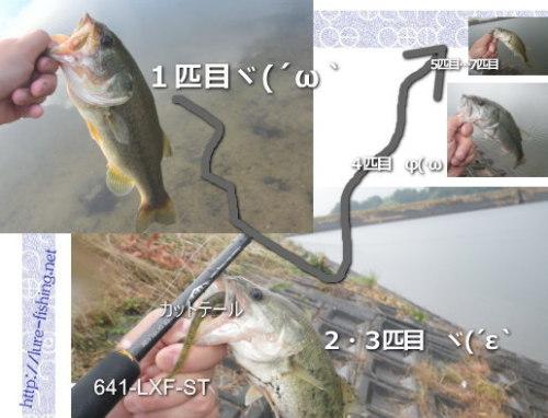 h27.07山手のバス釣り.jpg