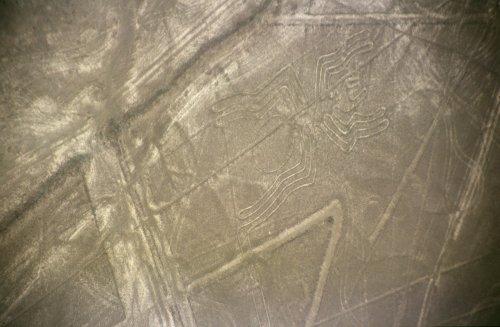 Nazca-lineas-arana-c01.jpg