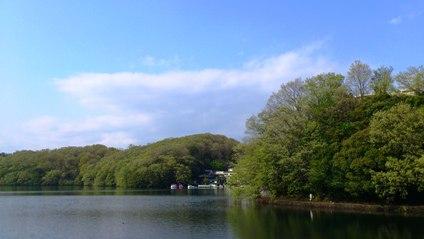 新緑の一碧湖.JPG
