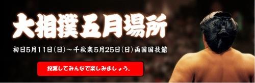 大相撲五月場所title-2.jpg
