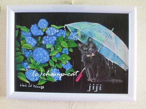 雨の日の猫ジジちゃん20200514.jpg